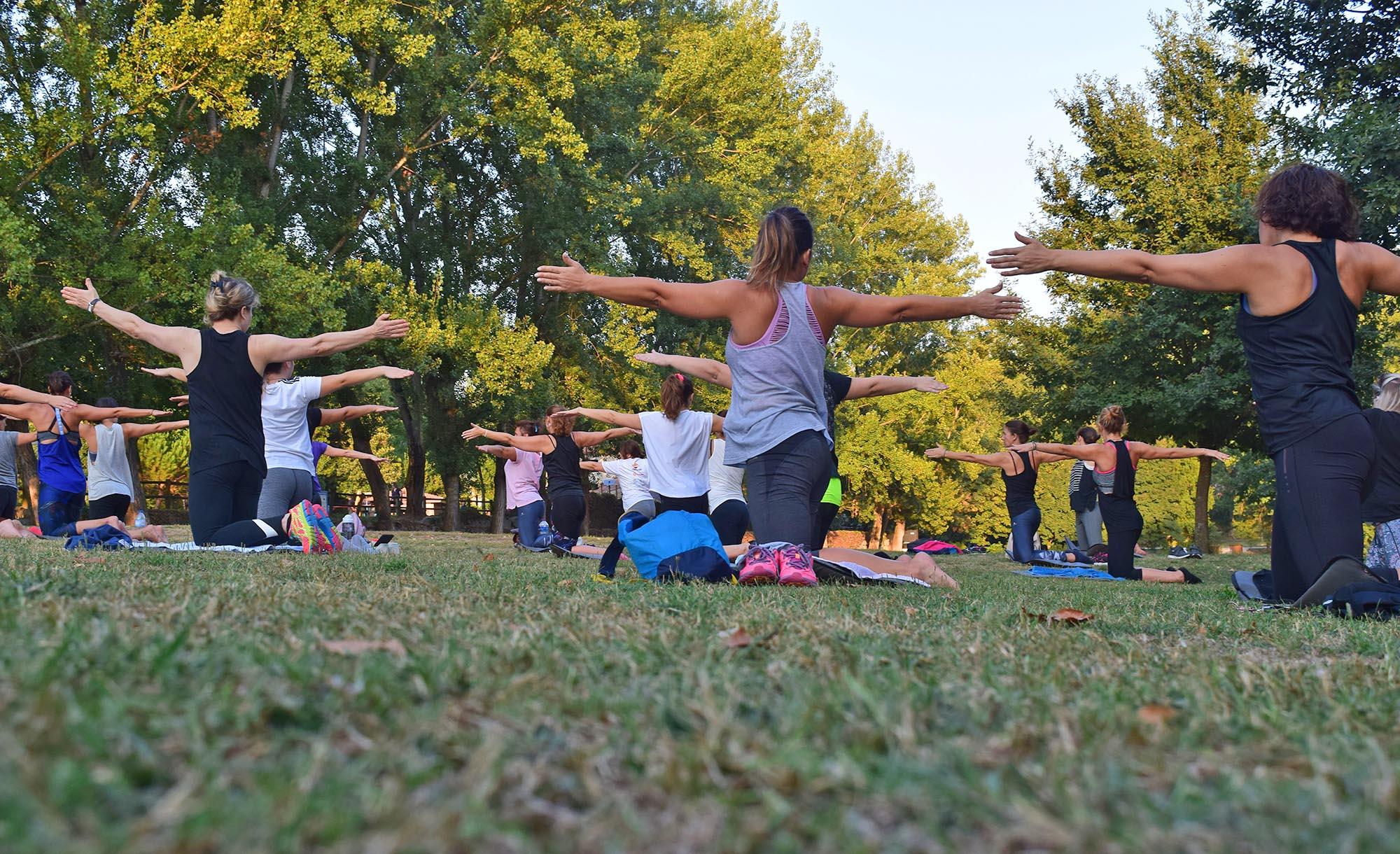 Eine Gruppe Yogapraktizierende in einer Parkladschaft